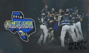 The Skeeters win the 2018 Atlantic League Championship!